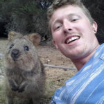 in-australia-the-quokka-invades-all-selfies-13